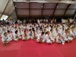 чемпионат по каратэ умаг хорватия опасность выходов